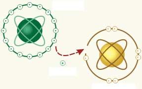 A fenoloidok és antioxidáns hatásuk
